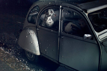 The Silence of Dogs in Cars - Martin Usborne_01
