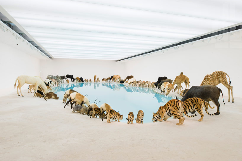 Cai Guo Qiang Falling Back To Earth_04