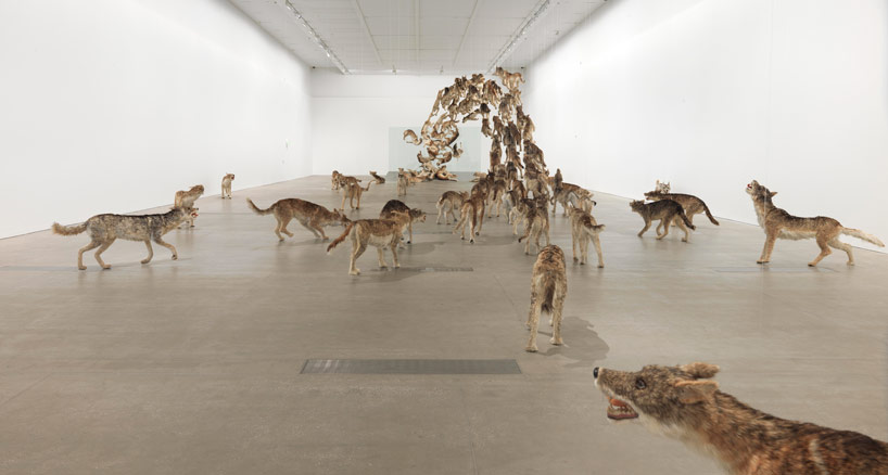 Cai Guo Qiang Falling Back To Earth_07