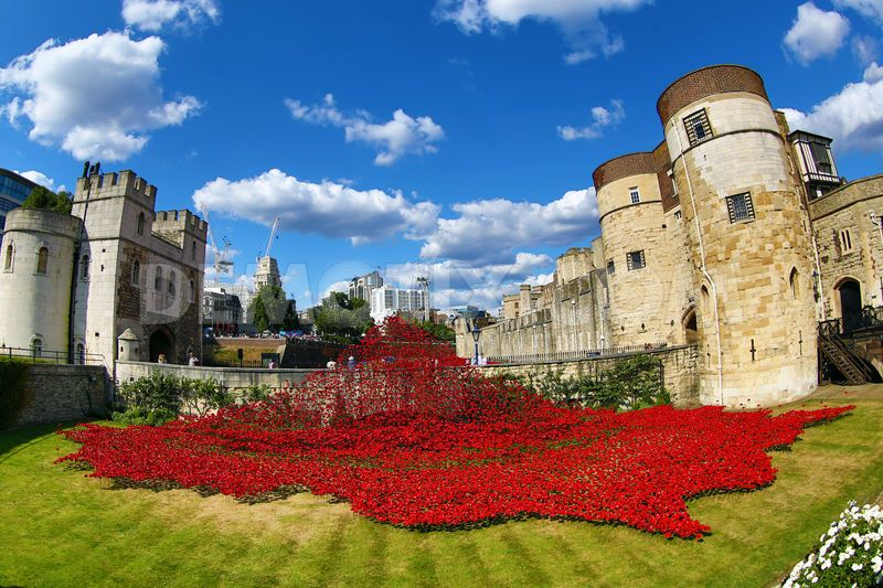 Paul Cummins-Ceramic Poppies Tower of London_02