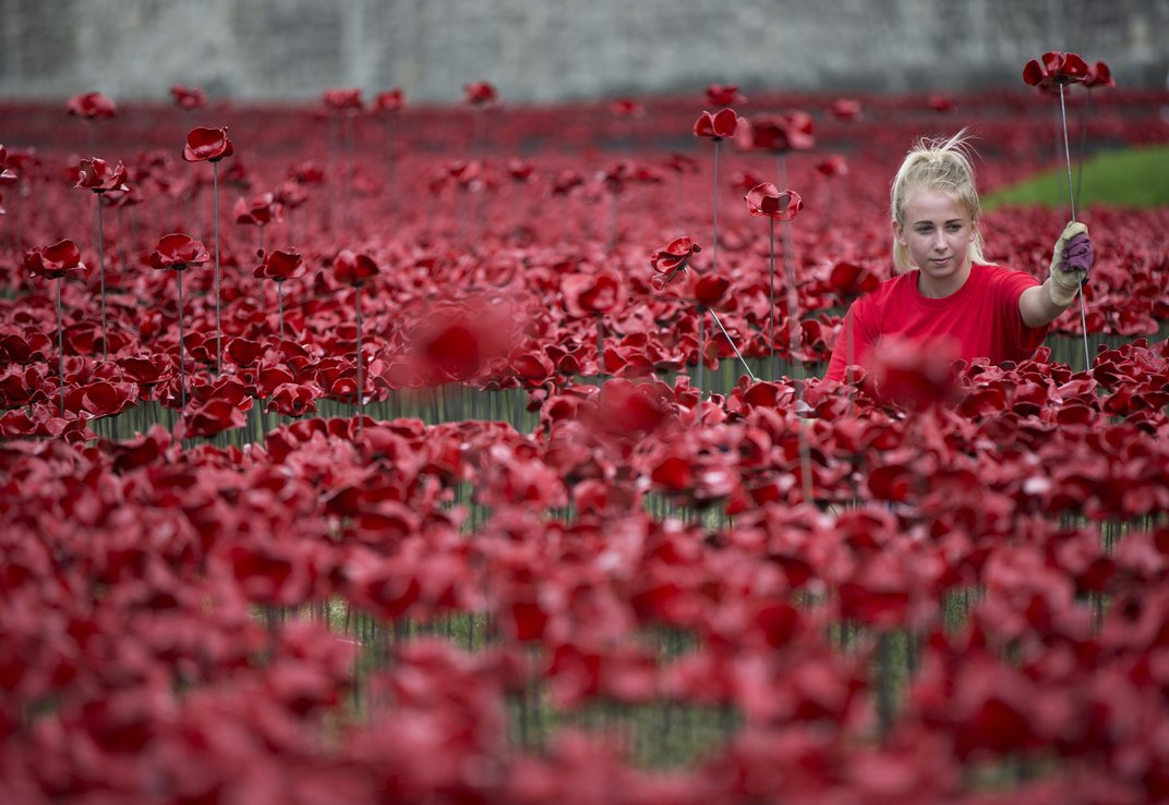 Paul Cummins-Ceramic Poppies Tower of London_05