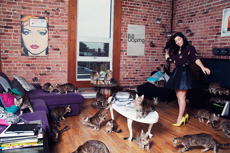 Andreanne Lupien Crazy Cat Lovers_06