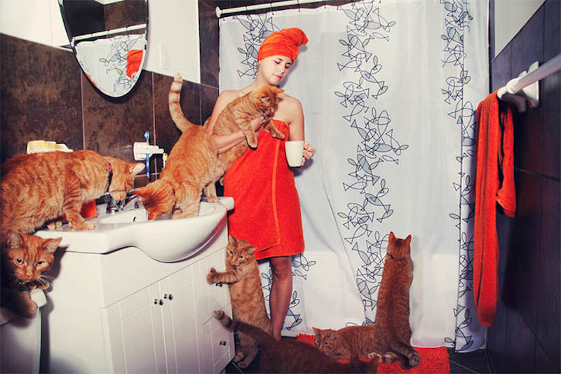 Andreanne Lupien Crazy Cat Lovers_07