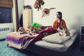 Andreanne Lupien Crazy Cat Lovers_10
