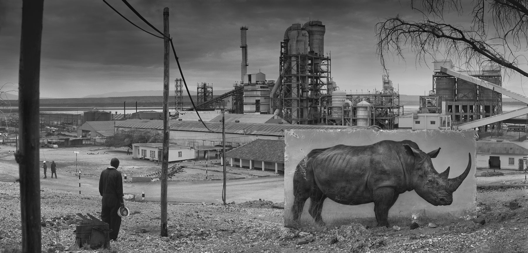 Nick Brandt_Inherit The Dust_Factory-With-Rhino