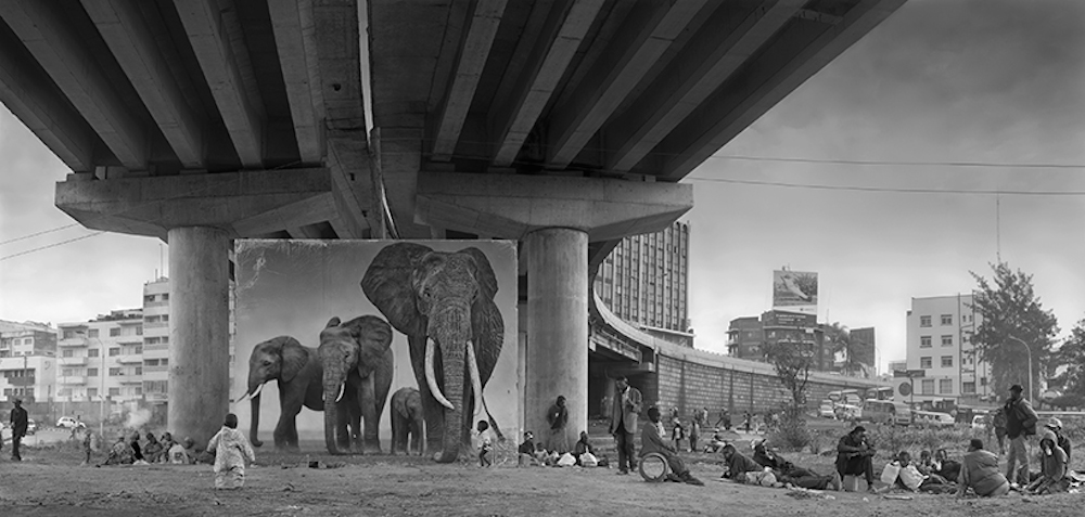 Nick Brandt_Inherit The Dust_Underpass With Elephants