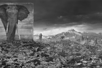 Nick Brandt_Inherit The Dust_Wasteland-With-Elephant