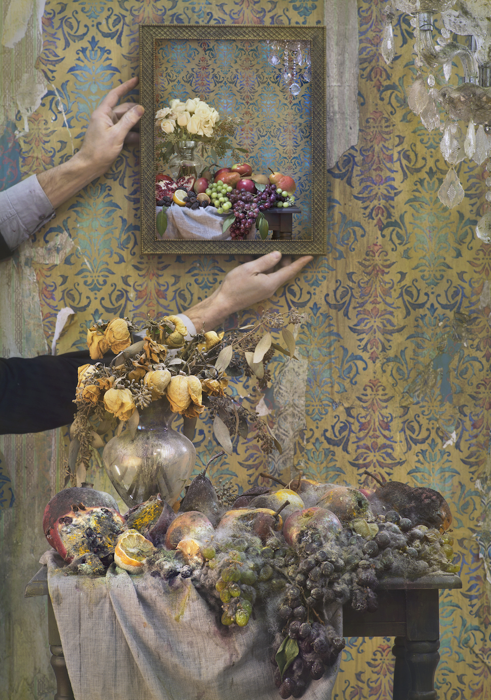 Robert and Shana Parke Harrison_Nature-Morte-2015