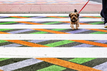 christo-guelov-colourful-pedestrian-crossings-madrid_02